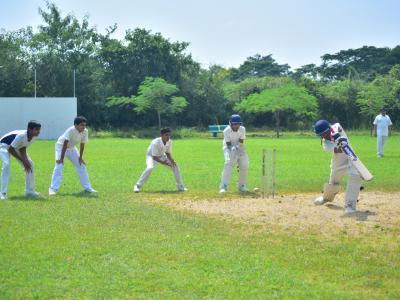 cricket7